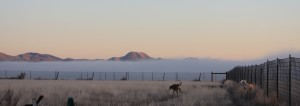 low lying clouds on South Mountain...bet those people were feeling gloomy!